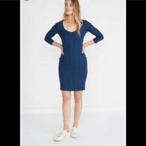 Amour Vert Navy Long Sleeve Dress NWT